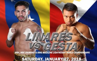 Jorge Linares vs. Mercito Gesta – Championship Fight